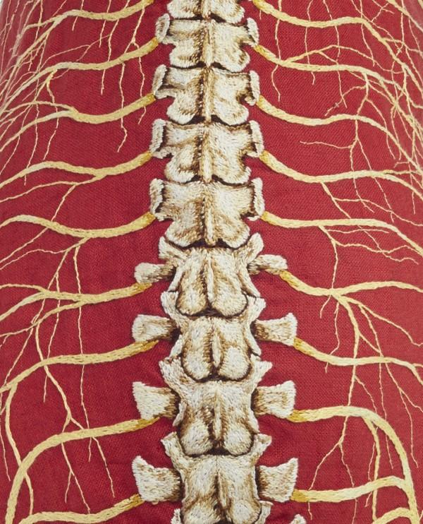 Deborah Simon - Ursus americanus - embroidery