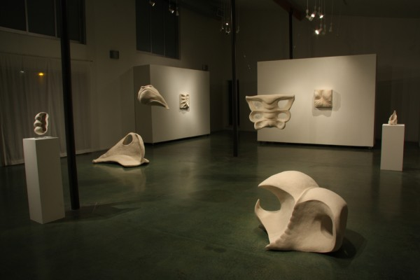 Stephanie Metz, Flesh and Bone Installation View