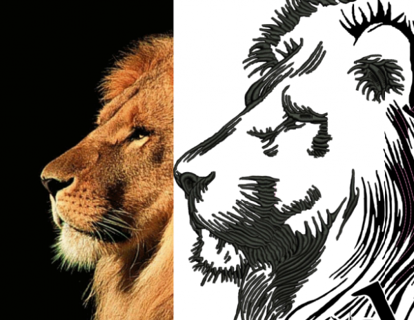 Heart of a Lion - Exploration of Reference