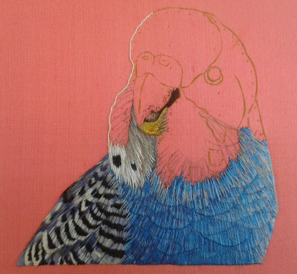 Royal school of needlework kate barlow s budgerigar