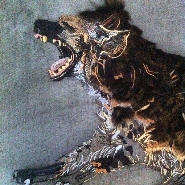Jacky Puzey, Hyena detail. Jo Hounsome Photography