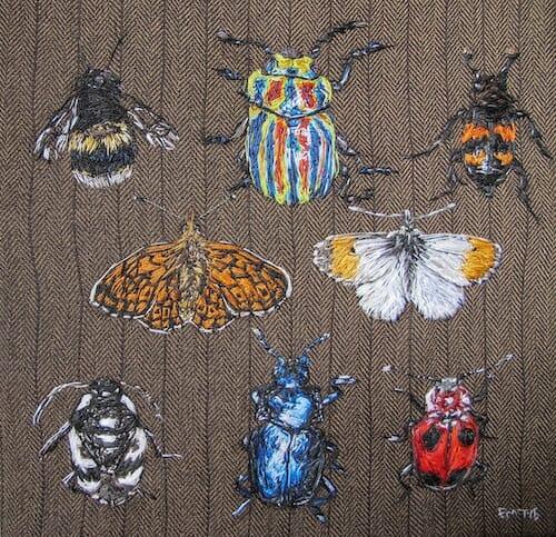 Emily Tull - Entomology - Hand Embroidery