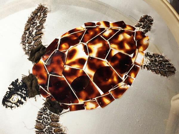 Sea turtle embroidery, by Silvia Perramon Rubio