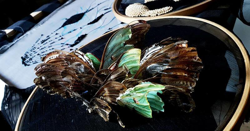 Wing detail, Inge Tiemens, Hand & Lock Prize for Embroidery winner