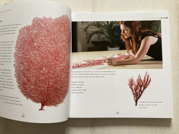Organic Embroidery by Meredith Woolnough - sketch to stitch